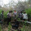 Guna Lindungi Kawasan Hutan, Koramil Kota Sumbawa Lakukan Patgab.