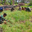 Dukung Hanpang di Perbatasan, Satgas Pamtas Sektor Timur Panen Bawang